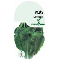 זרעי חסה אורגני