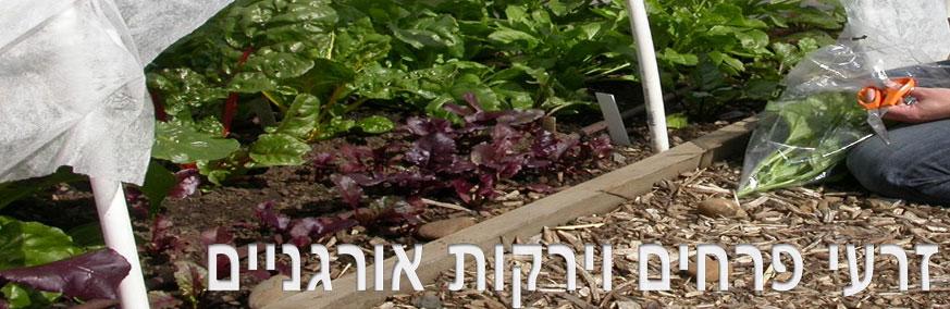 זרעי פרחים וירקות
